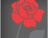 Logo for the National Day of Remembrance and Action on Violence Against Women (from Status of Women Canada website)