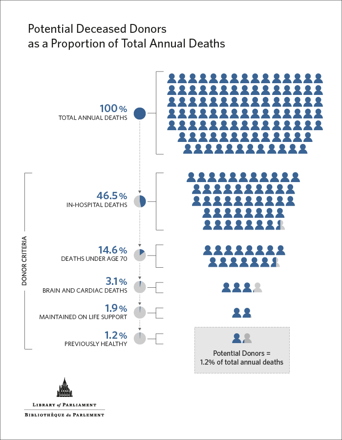 Infographic demonstrates that potential donors = 1.2% of total annual deaths
