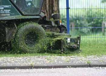 onderhoud groen