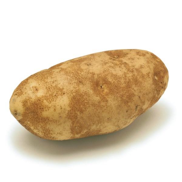 Potato - russet-potato-main