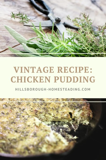 chicken pudding