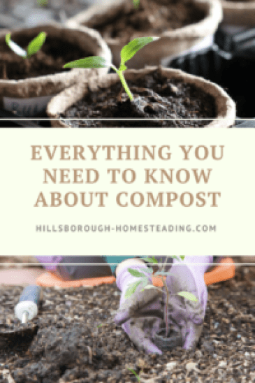 everything you need to know about compost
