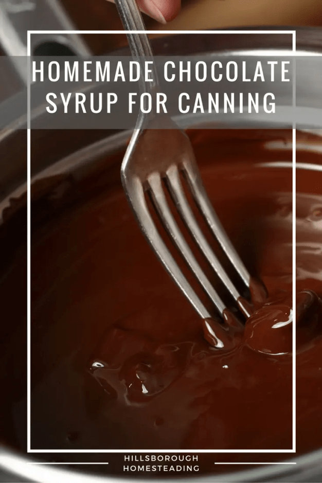 Homemade Chocolate Syrup For Canning