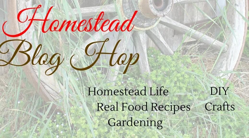 Homestead-Blog-Hop