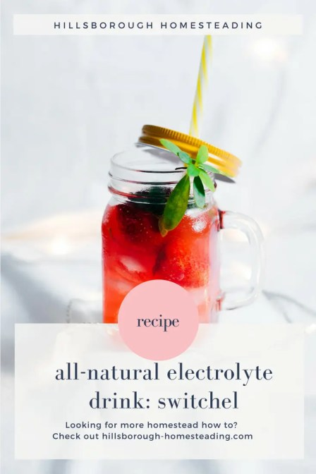 all natural electrolyte drink amish haymakers punch switchel drink