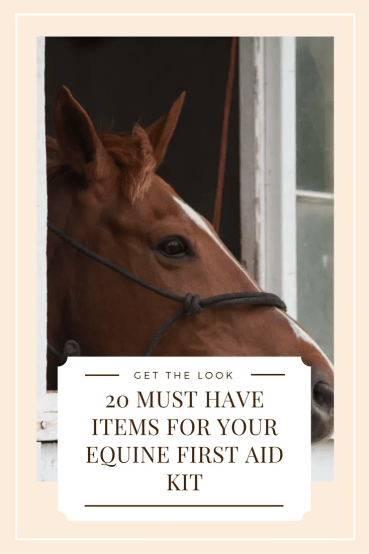 DIY horse first aid kit at home