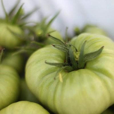 Green Tomato Marmalade Recipe – Plus BONUS Green Tomato Recipe Roundup