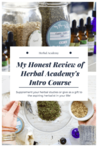 herbal academy review on their introductory herbalism course