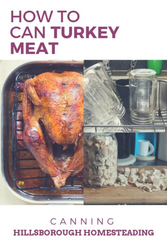 how to can turkey meat from leftovers