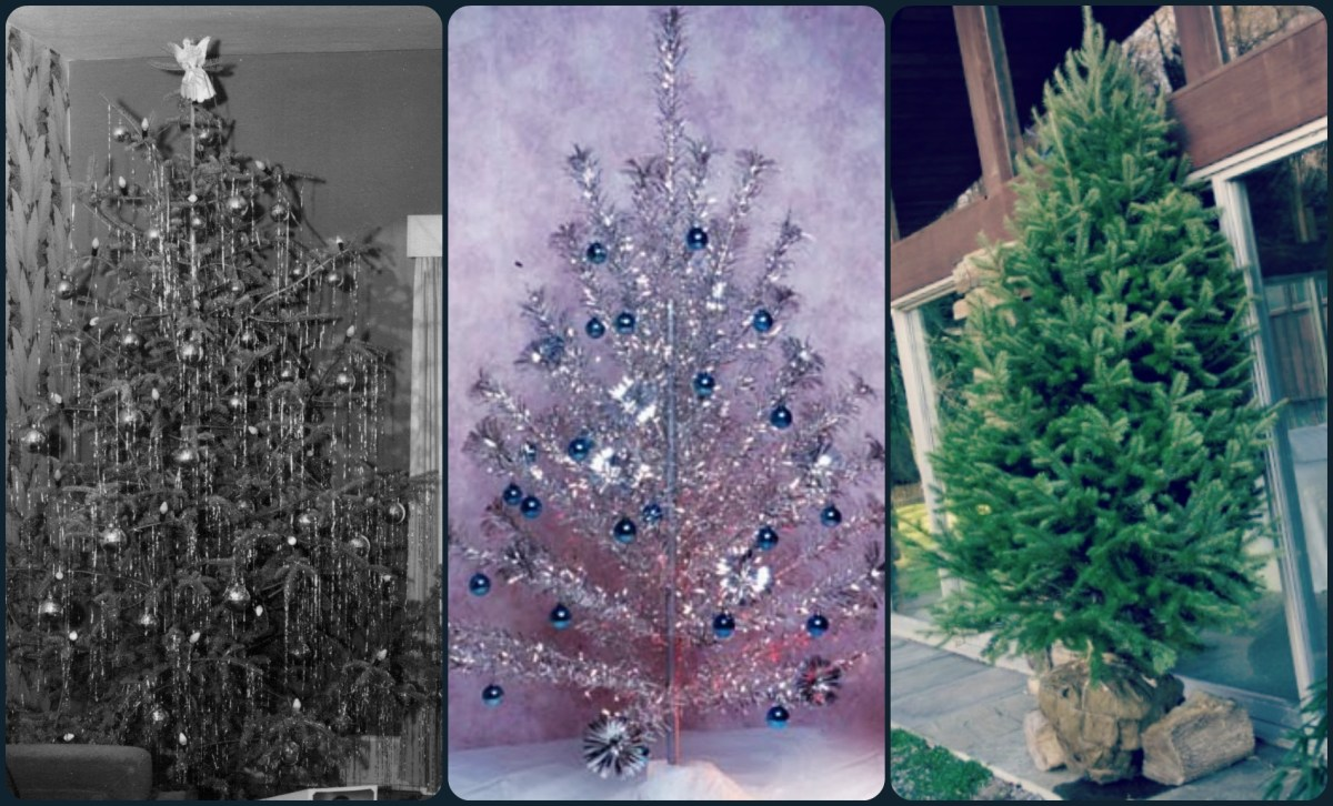 that 70 s christmas tree that 70 s christmas tree