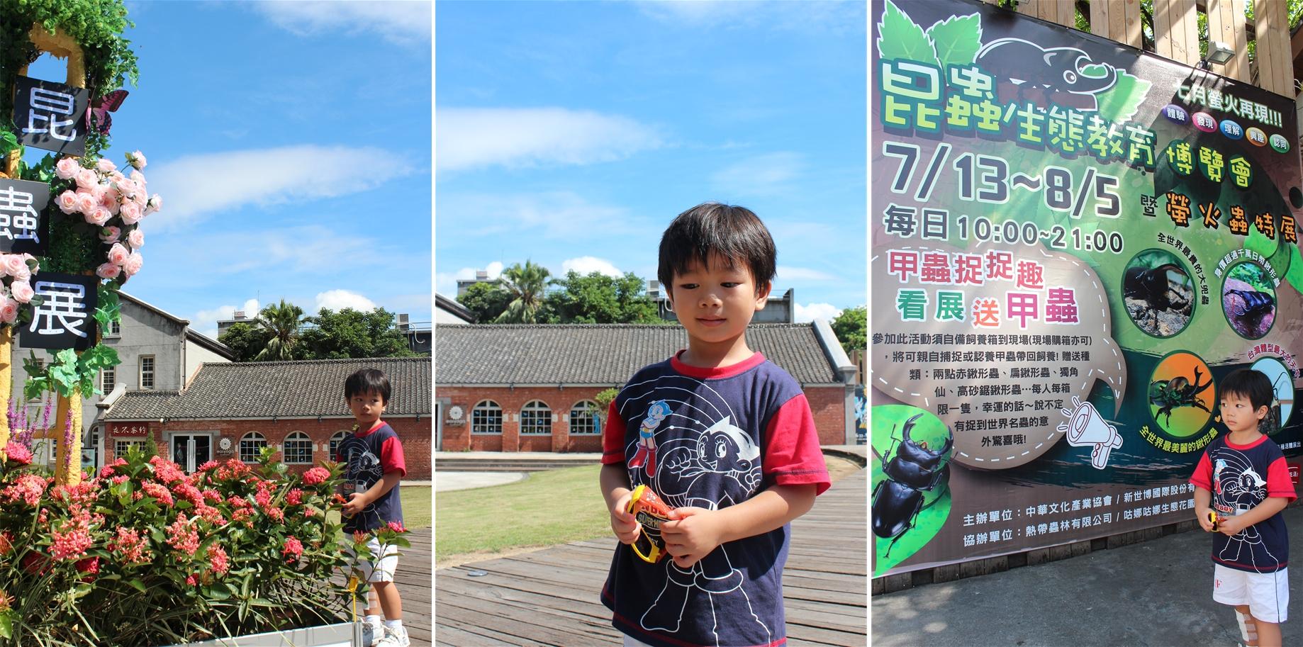 昆蟲生態教育博覽會暨螢火蟲特展   Hillshsu's Blog