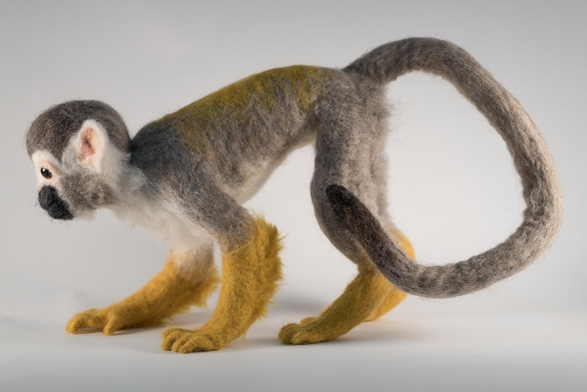 0027_F_Squirrel Monkey-2