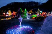 Where to See the Best Christmas Lights