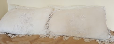 a pair of mountmellic pillowcases