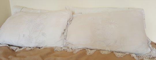 a pair of mountmellic pillowcases