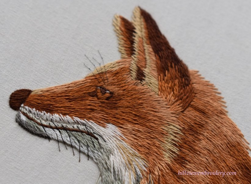 red fox face detail.jpg