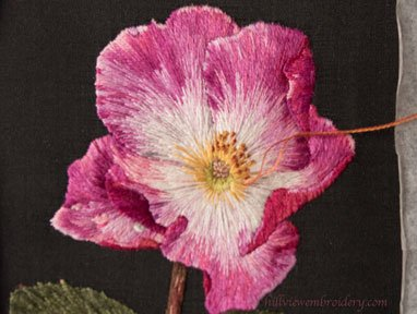 Silk shaded rose, designed and stitched by Catherine Patterson as part of the RSN Certificate