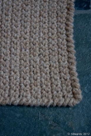 Detail of reverse single crochet border