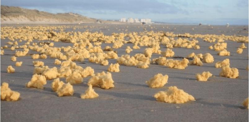 La misteriosa espuma amarilla que apareció en las costas de Francia (VIDEO)