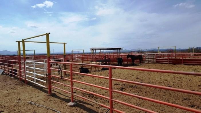 Corral: Dueños de ranchos, levantados antes de venderlos a Duarte