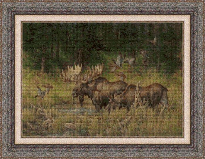 Animales 0037 1