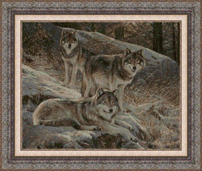 Animales 0042 1
