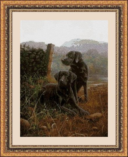 ANIMALES 30151