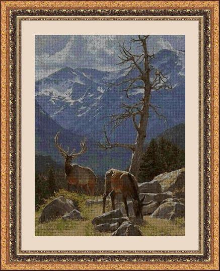 ANIMALES 30205