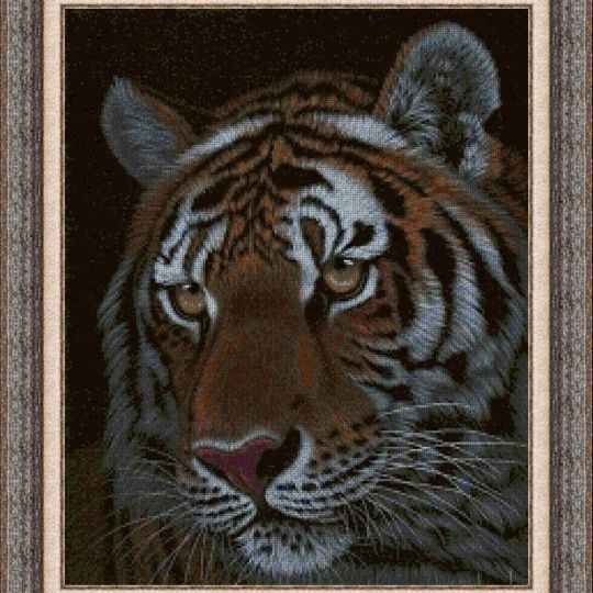 Animales 0132