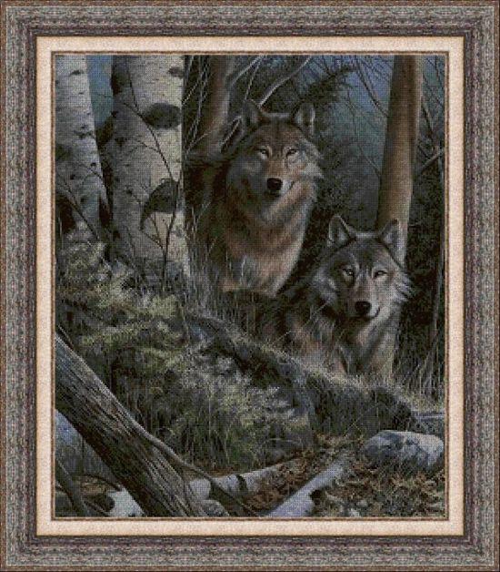 Animales 0025