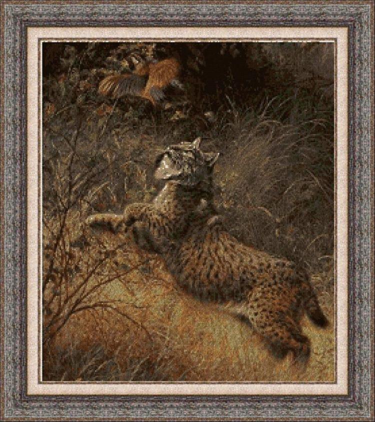 Animales 0085