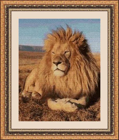 Animales 1045 1