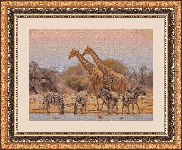 Animales 249 1