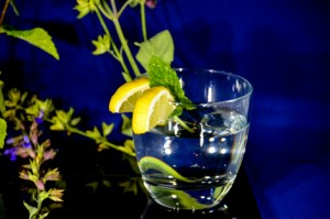 Glass of gin with Lemon and ice