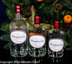 Hiltingbury Gin different sizes and different bottles