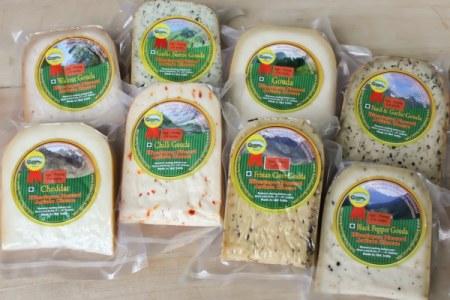 Variety of natural Gouda and Cheddar cheese wedges made in the Himalayas of Kashmir India
