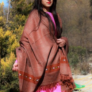 Brown Pure Wool Purely Hand Woven Embroidered Handloom Shawl