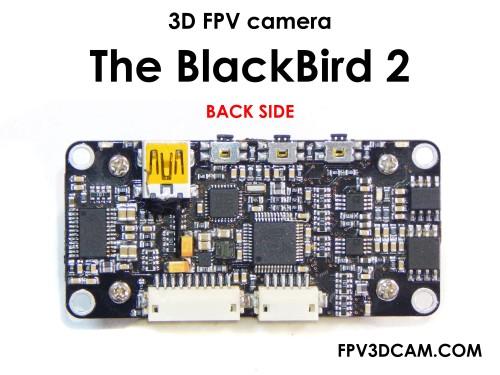3dfpvblackbird2fotobackside1