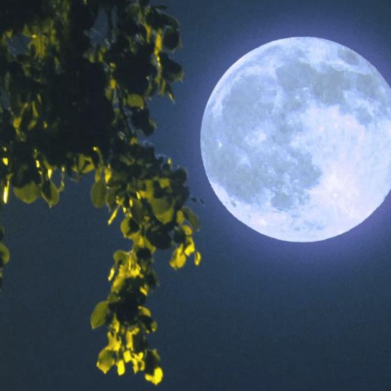 Луна в третьем доме