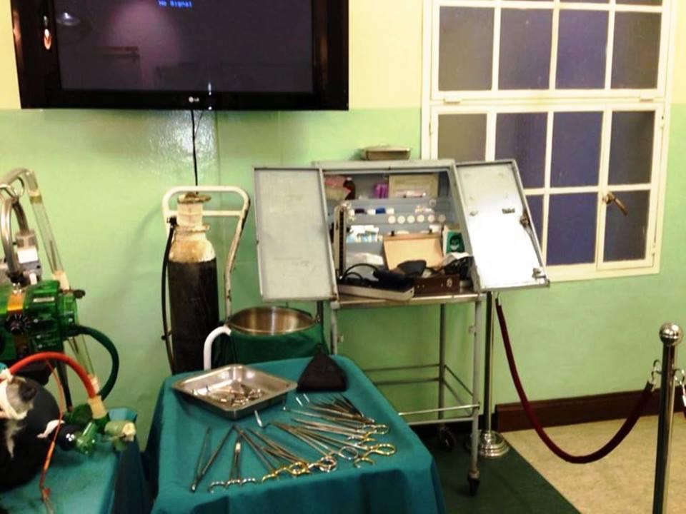 Heart Museum in Groote Schuur Hospital  Himetop