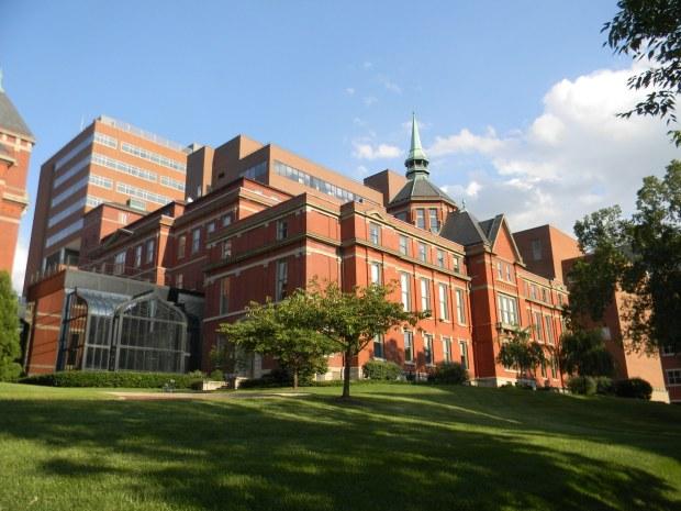 Image result for Johns Hopkins School of Medicine