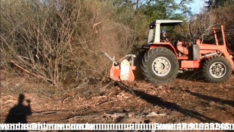 Limpeza de faixa de transmissão com Triturador Florestal Himev Ecotritus