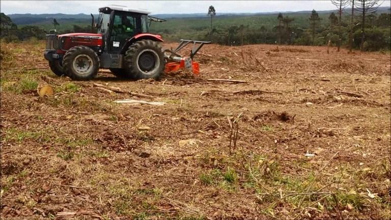 Restos de colheita de pinus sendo triturados por Ecotritus HP 240