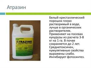 атразин