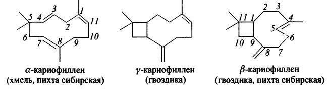 кариофиллены