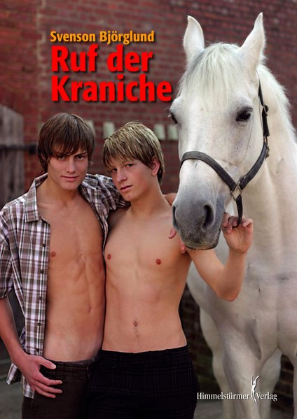 Ruf der Kraniche | Himmelstürmer Verlag
