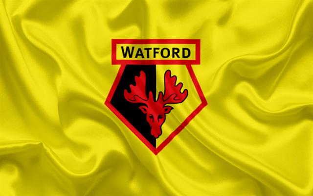 watford-football-club-premier-league-football-himnode.com
