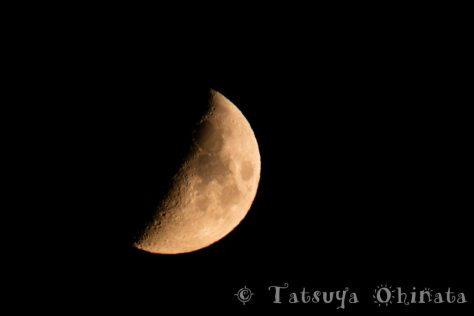 久々の晴れ間に見えた月