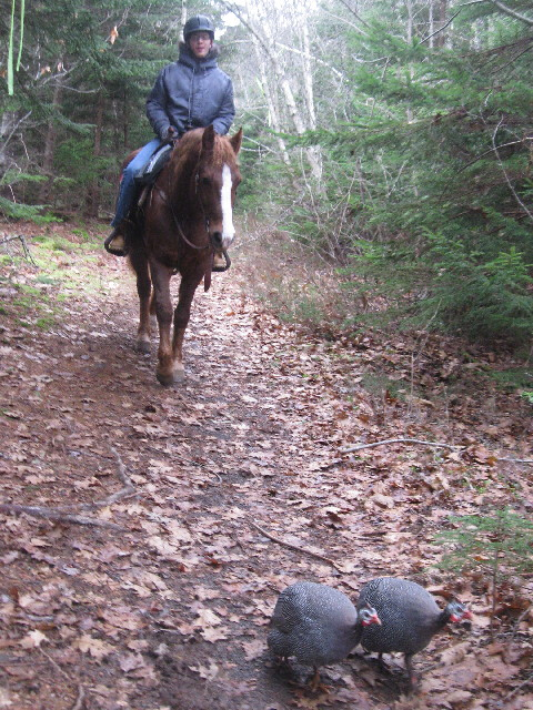 On the Trail with Churpie and Chester