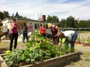 We Dig Therapeutic Garden-Gerald Keddy August 2014